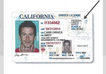 drivers license renewal tacoma washington